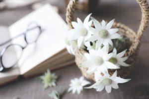 花籠と眼鏡